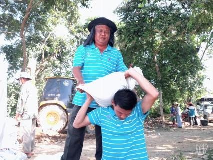 กปภ.สาขาเทิง ร่วมมือกับชุมชนบ้านพระเกิด ม.14 , บ้านตั้งข้าว ม.2 , บ้านสันทรายมูล ม.1 และกลุ่มเกษตรผู้ใช้น้ำ ต.เวียง อ.เทิง จ.เชียงราย ร่วมกันซ่อมแซมฝายชะลอน้ำอิงซึ่งชำรุด