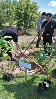 กปภ.สาขาเดชอุดม ร่วมกิจกรรมโครงการปลูกป่าถาวรถวายแม่ของแผ่นดิน เนื่องในโอกาสมหามงคลเฉลิมพระชนมพรรษา ๘๕ พรรษา ประจำปี ๒๕๖๐